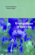 Copertina del libro Evangelizza la tua vita