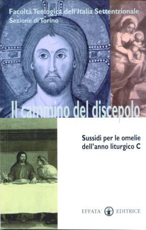 Copertina del libro Il cammino del discepolo