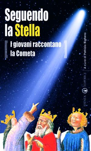 Copertina del libro Seguendo la stella